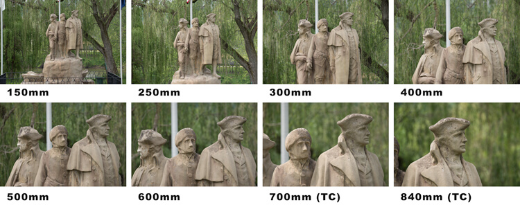 The above images show the range and extra reach of the Sigma 150-600mm with the last 2 images having the 1.4 TC added for an extra 240mm of reach.