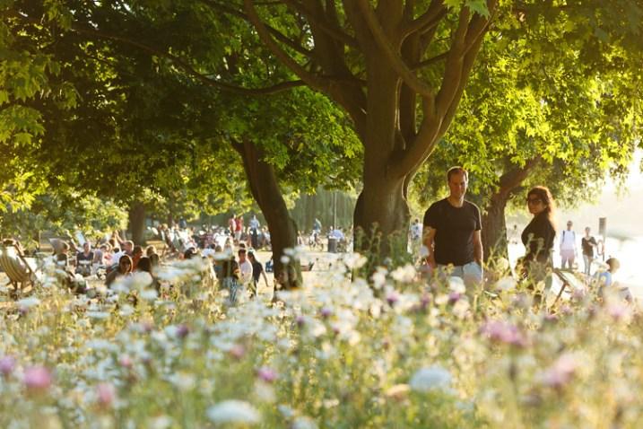 Inspire Your Creativity park sunlight