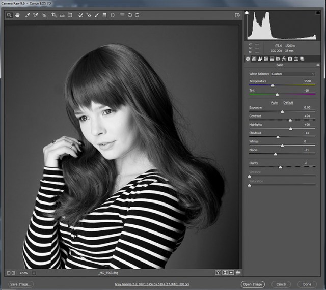black-and-white-conversions-in-photoshop-ACR-rawcontrols