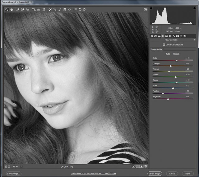 black-and-white-conversions-in-photoshop-ACR-zoom