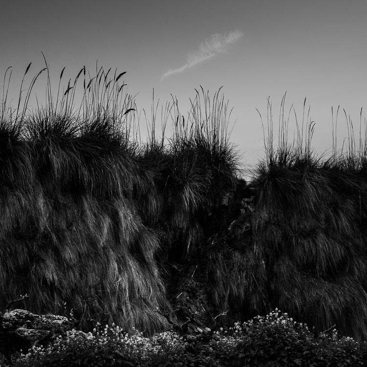 Black & white photography mistakes