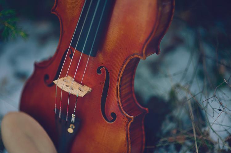 violin in the grass