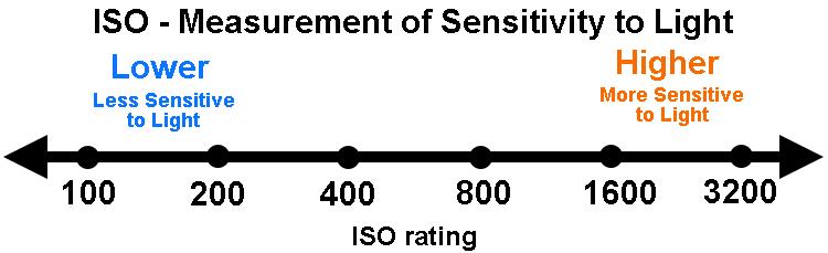 iso-graphic-rev