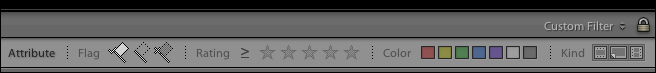 lightroom-library-module-filter-bar