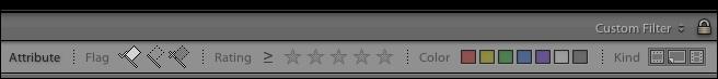 lightroom-library-module-filter-bar