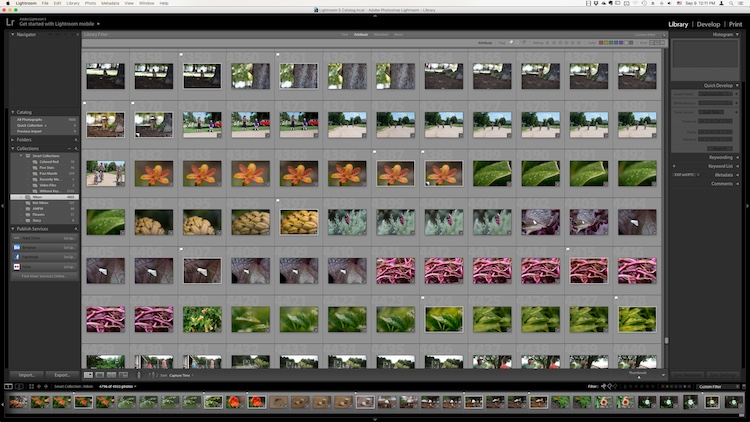 The Library module. No late fees here, just lots of ways to manage your images.