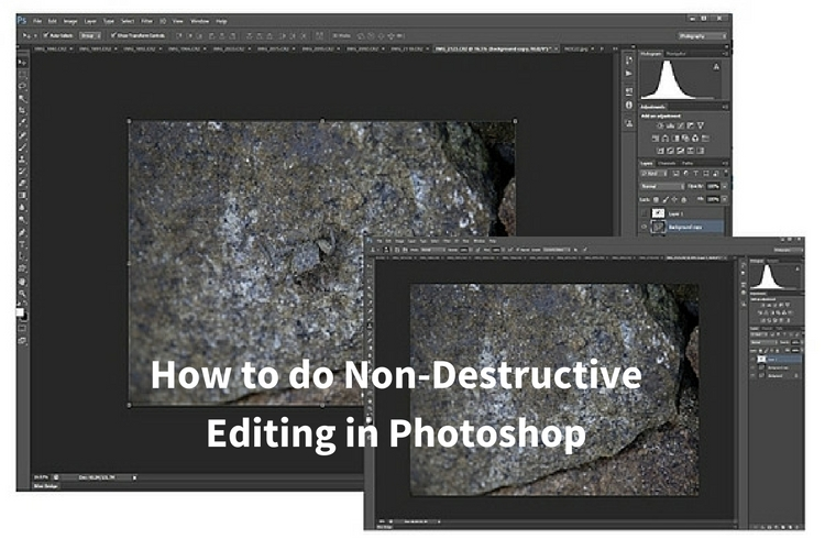 Photoshop Elements 5 Workflow: The Digital Photographers Guide