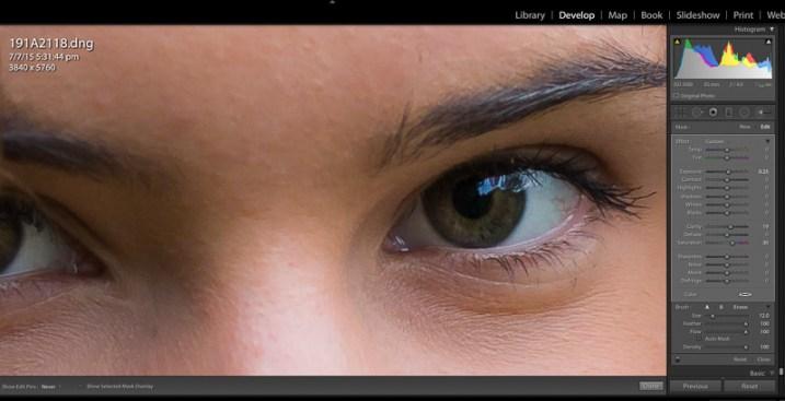 image showing Lightroom custom brush presets
