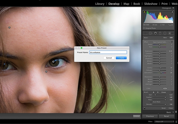image showing Lightroom custom brush presets