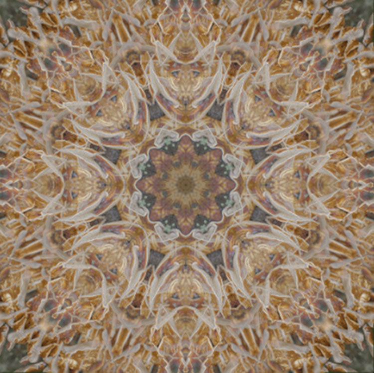 How To Turn Your Images Into Kaleidoscope Patterns Amazing Kaleidoscope Patterns