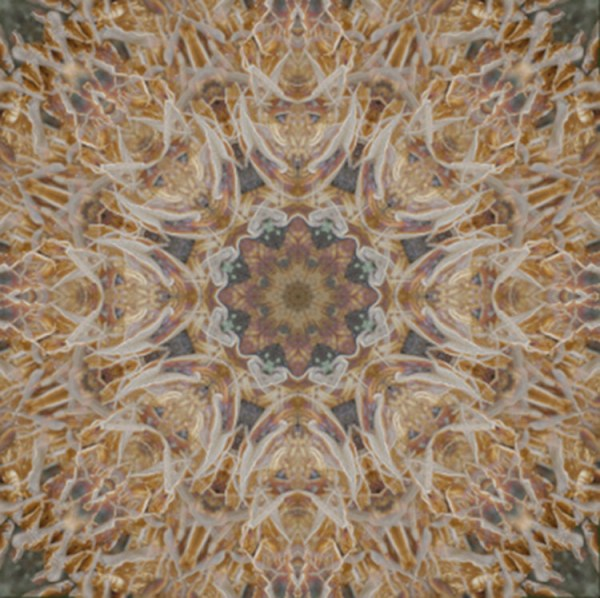 How to Turn Your Images into Kaleidoscope Patterns