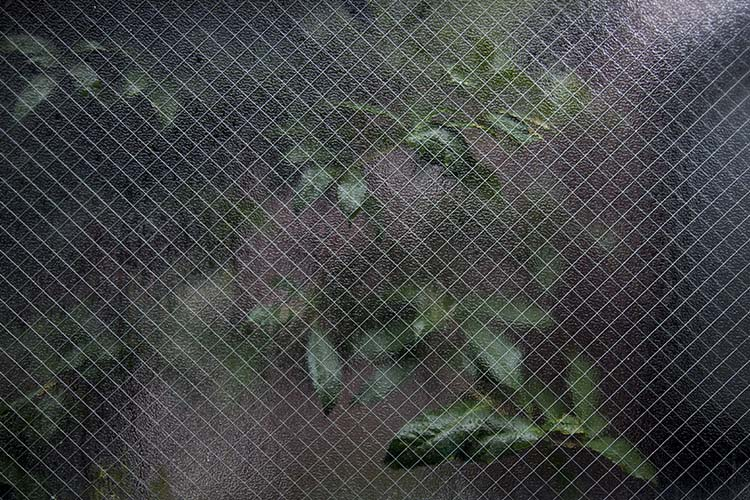 photography-through-glass04