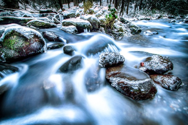 Winter Photography 1
