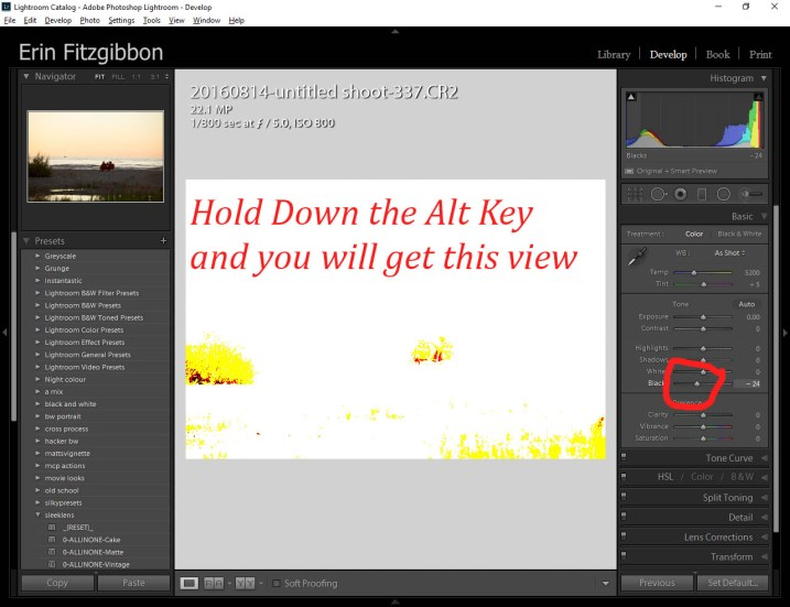 Alt key Lightroom Develop module black point slider.