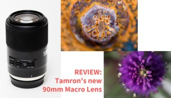 REVIEW of the Tamron 90mm Macro Lens