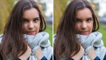 How to Create and Import Custom Adjustment Brush Presets for Lightroom
