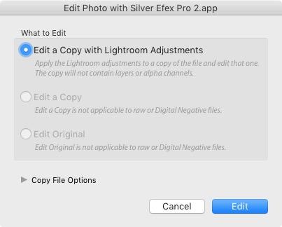 Selective coloring in Silver Efex Pro 2