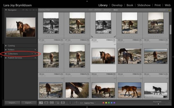 Four Advantages of Using Lightroom Collections