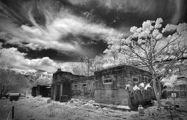 How to Enhance your Black and White images with Infrared ...