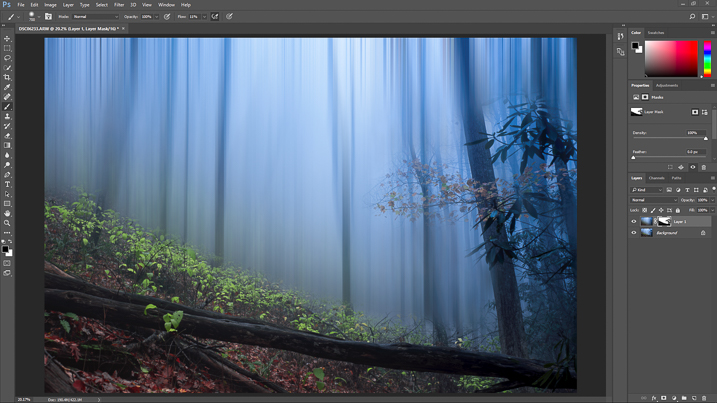 how to create a forest