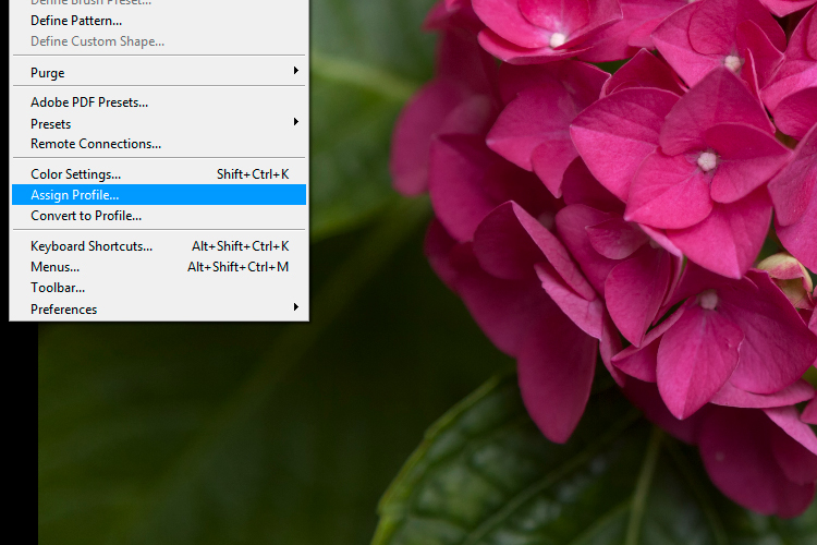 4a Assign Profile - 6 Color Settings in Photoshop That You Need to Know
