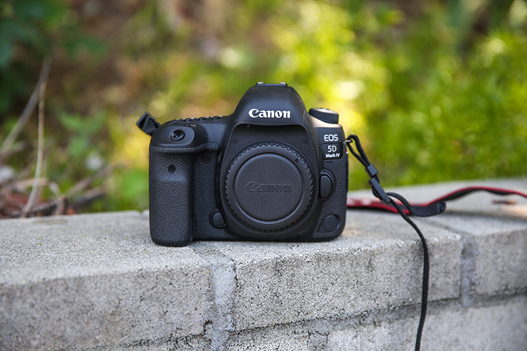 Review of the Canon 5D Mark IV