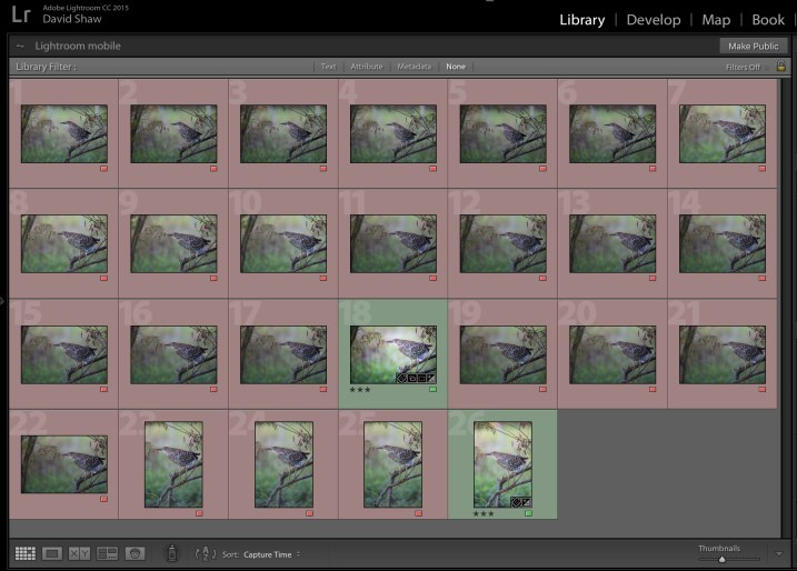 Cull Your Photos Carefully - 5 Steps to Follow Before You Hit Delete
