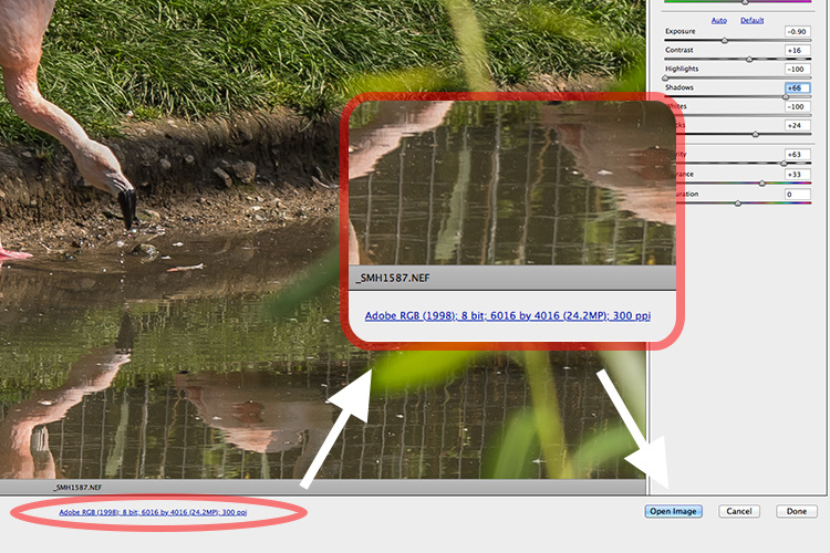 How to set in Camera Raw the default setting for images to be exported to Photoshop as Smart Objects