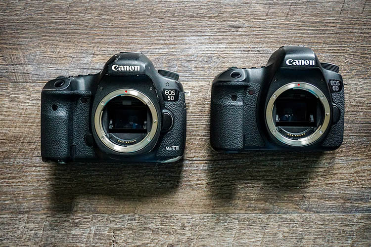 Concert Photography 101: Cameras and Lenses for Beginners