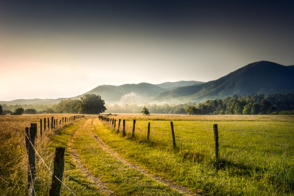 4 Key Elements to Help You Create Stronger Landscape Photography