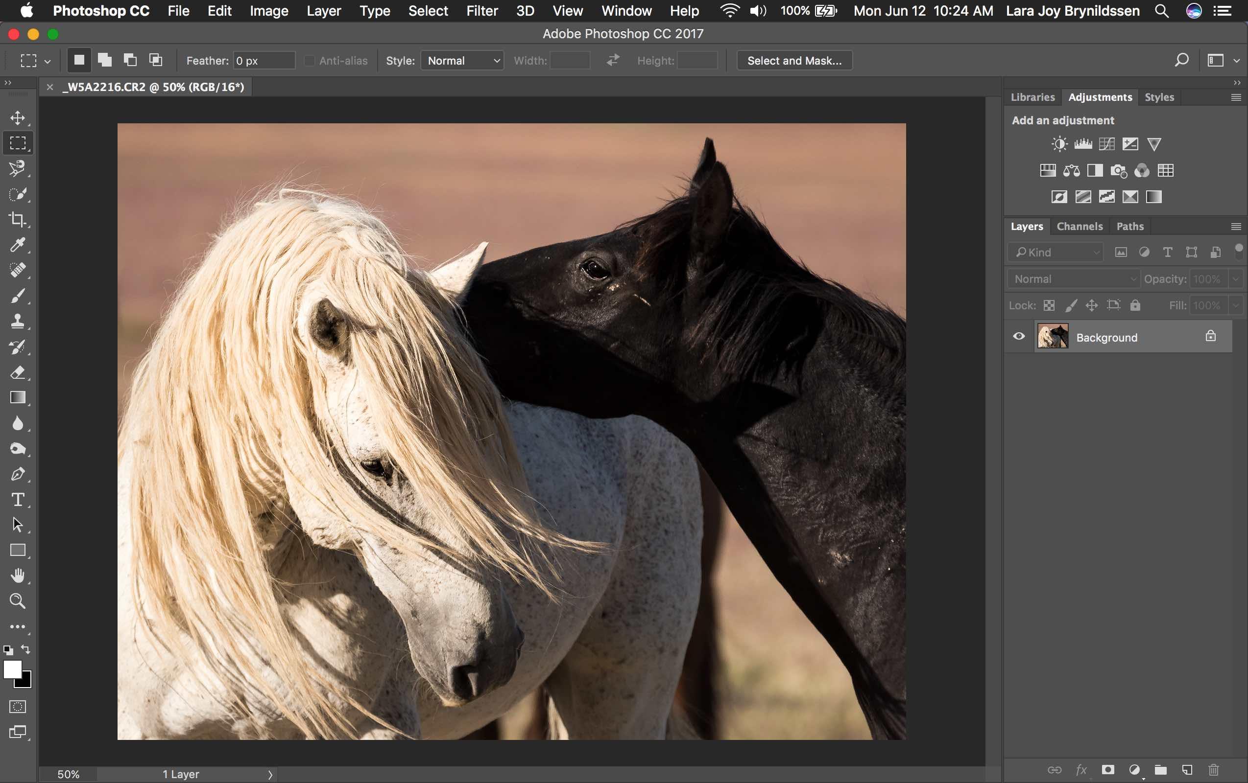 Photoshop Spot Healing Brush Tool - PS interface