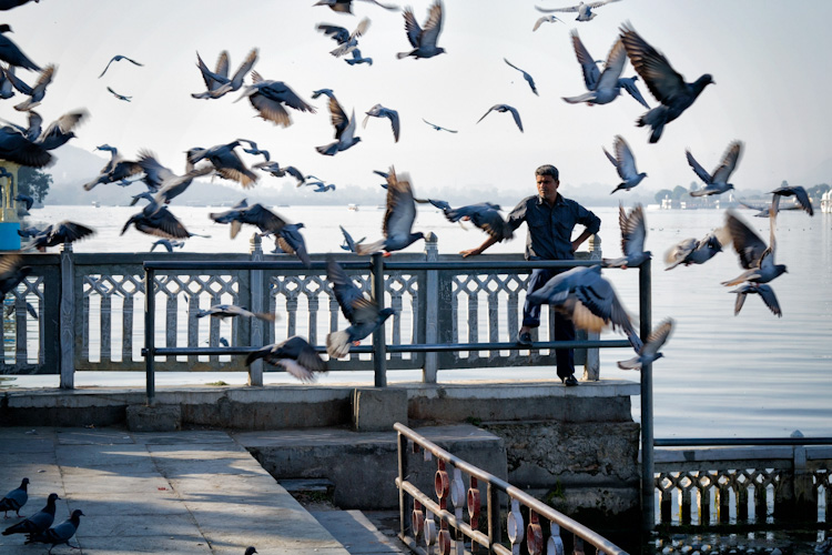 Lake Pichola Udaipur Rajasthan - 5 Tips for Travel Photography