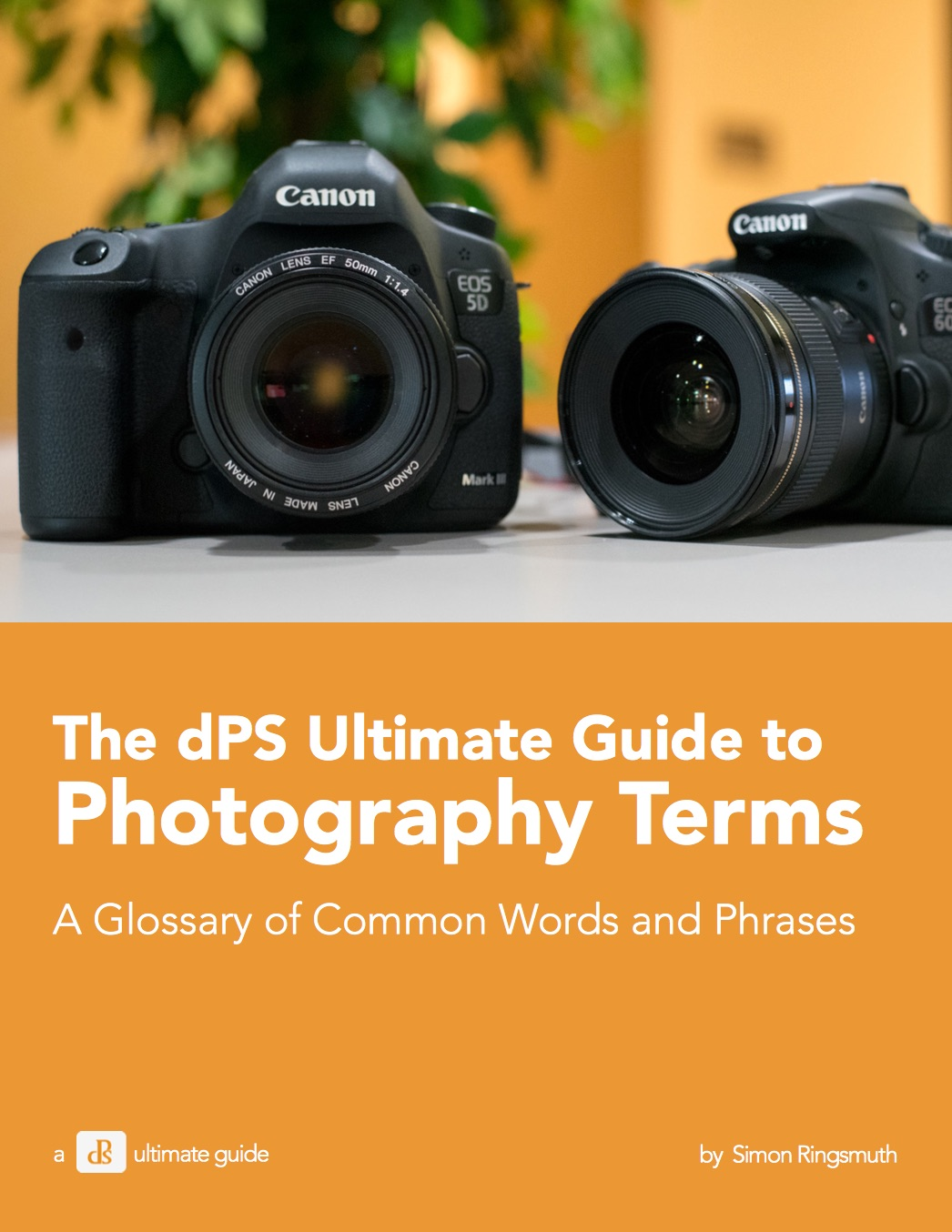 The Ultimate Beginners Guide to Photography