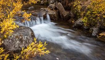 3 Tips to Help You Take Better Autumn Photos