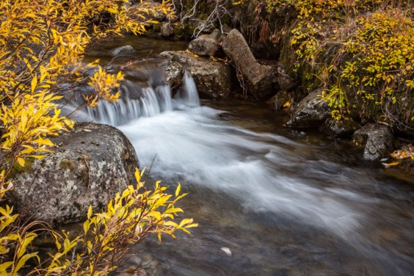 3 Tips to Help You Take Better Autumn Photos
