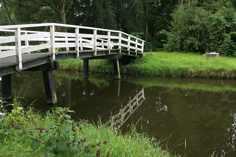 Bridge Incident - How to Understand Reflected Versus Incident Light and Get More Accurate Exposures