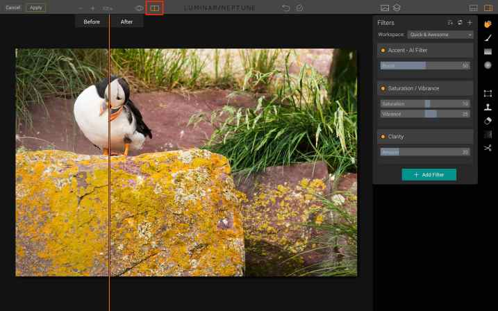 Luminar for beginners - compare icon