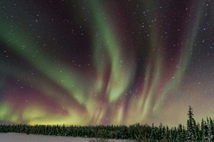 DPS Aurora Article Image 8