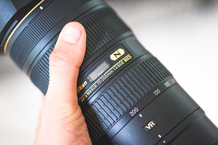 5 Top Value Lenses for Getting Started in Wildlife Photography