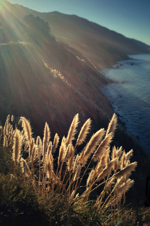 Big Sur-iPhone  9 of the Best Apps to Help You Do Awesome Mobile Phone Photography