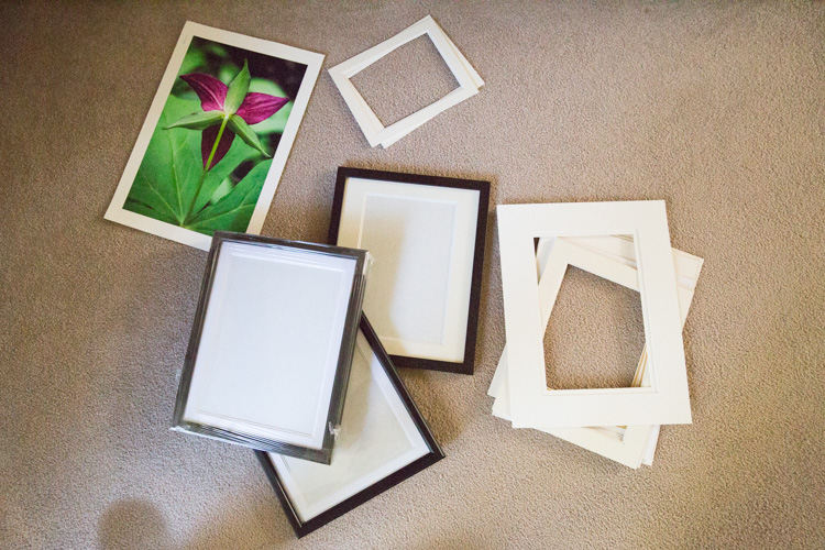 7 Ideas for Low Cost Printing and Framing Options for Your Images