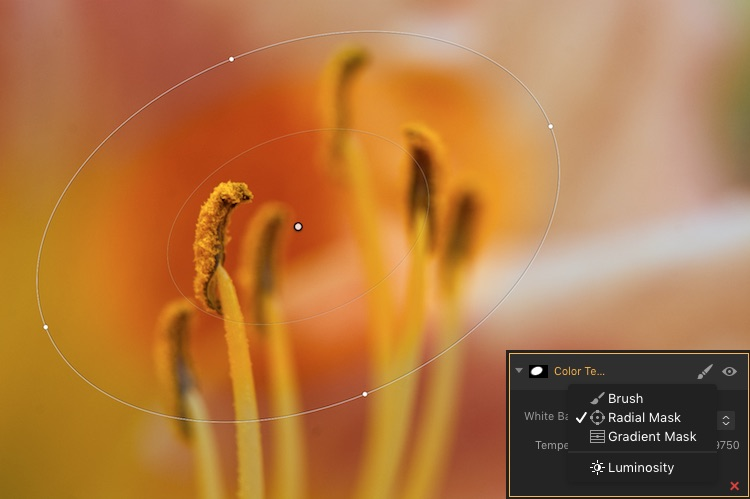 How to use Filter Masks in Luminar for Powerful Local Adjustments