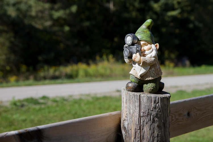 A gnome photographed from a distance to show how lens distortion influences scale