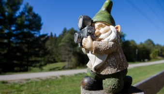 A gnome, photographed from a wide angle to distort the size and scale of it