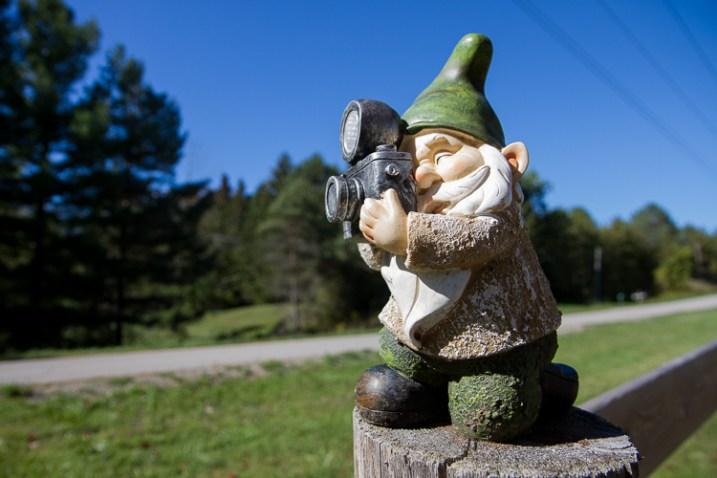 如何在摄影中表现出比例感-gnome