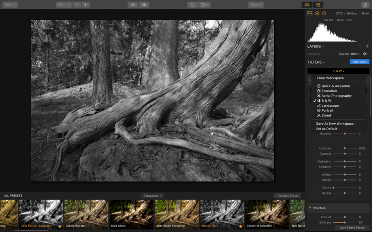 Luminar - The New Powerhouse for Fine Art Black and White Conversions