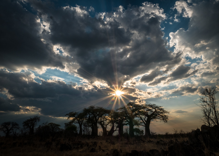 https://i1.wp.com/digital-photography-school.com/wp-content/uploads/2017/11/Botswana-102117-ChobeNP-Satuvi-691.jpg?resize=750%2C535&ssl=1