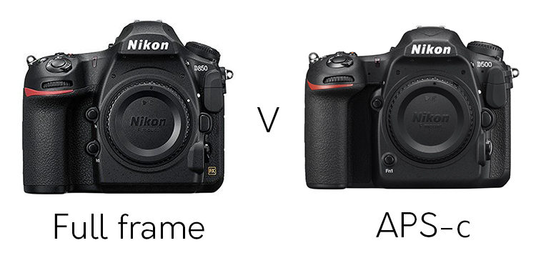 FX full frame and APS-C - Full Frame or APS-C for Wildlife Photography - Which is Best?