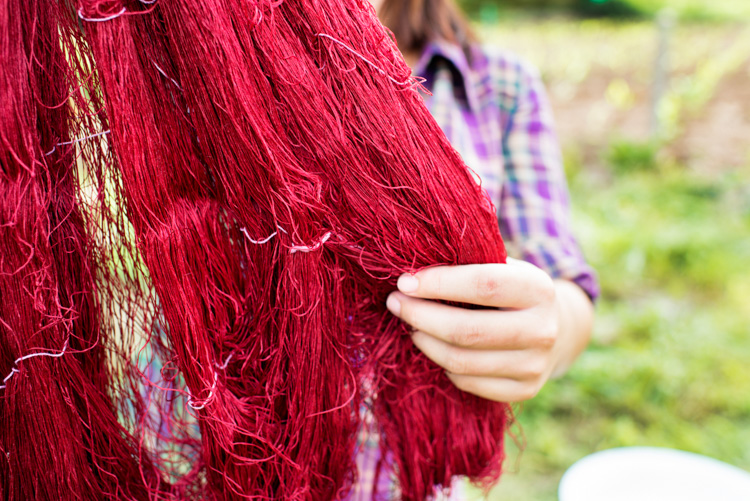Dyed silk thread. Why Volunteering is a Great Way to Grow as a Photographer
