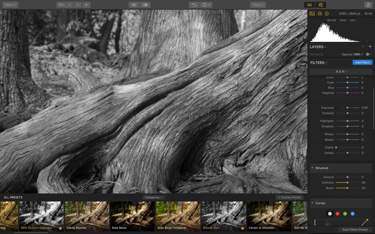 Image: Before adjusting the Black and White point sliders. Notice the lack of contrast in the image.